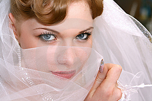 Bride Royalty Free Stock Photo - Image: 8392115