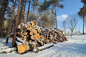 Stacked Wood Royalty Free Stock Image - Image: 8392396