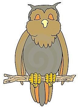 Owl Stock Photos - Image: 8395673
