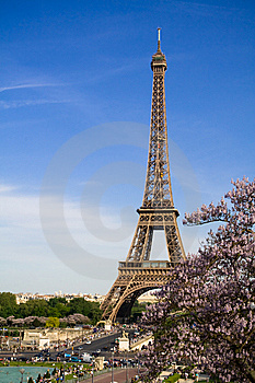 The Eiffel Tower. Spring Time Royalty Free Stock Photos - Image: 8396928