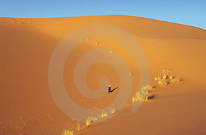 Dunes Alone Stock Photography - Image: 841662