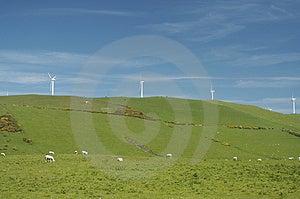 Windfarm Royalty Free Stock Images - Image: 845349