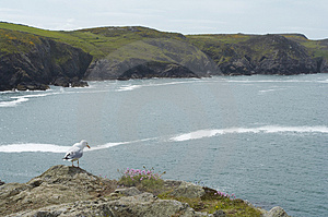 Cove Stock Photography - Image: 845362