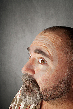 Profile Closeup Of Man In His 40s Stock Photography - Image: 8403922