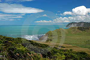 Beautiful Coastline In New Zealand Stock Images - Image: 8404034