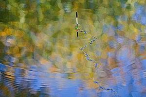 Fishing Line On Lake Surface Royalty Free Stock Images - Image: 8411959
