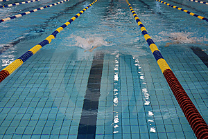 Swimming Competition Royalty Free Stock Photography - Image: 8412507
