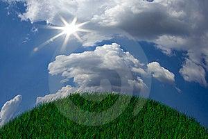 Fresh Green Grass Stock Photos - Image: 8418963