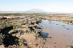 Beale Sand Royalty Free Stock Image - Image: 8422456