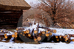 Wood Pile Stock Image - Image: 8422911