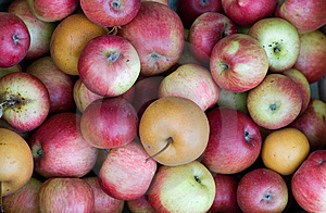 Apples Royalty Free Stock Photos - Image: 8425558