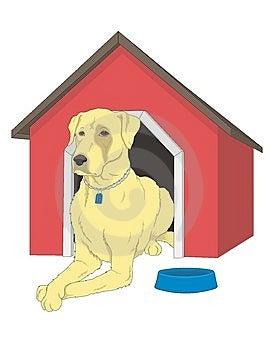Dog Royalty Free Stock Photo - Image: 8425775