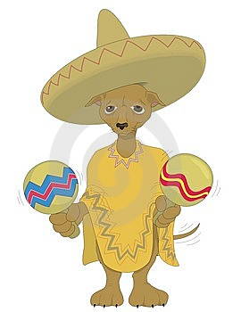 Mexico Dog Stock Image - Image: 8425891