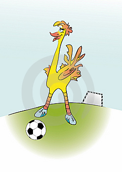 Ostrich Football Player Stock Photography - Image: 8427262