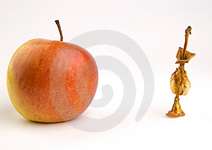 Apple Core Stock Photos - Image: 8430363