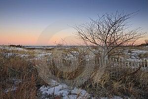 Snowy Sand Dunes At Sunrise Stock Photos - Image: 8440753
