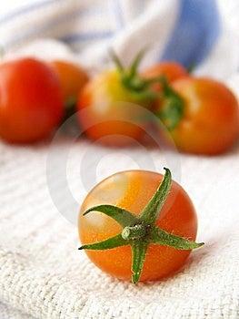 Tiny Tomatoes Stock Photo - Image: 8444440