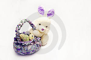 Easter Rabbit Stock Photography - Image: 8446442