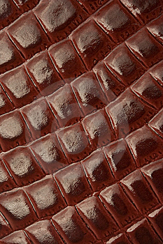 Red Leather Texture (crocodile Patterns) Stock Photo - Image: 8449740