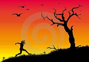 Dead Tree 2 Stock Image - Image: 8451481