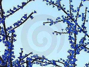 Creative Border Stock Photography - Image: 8451892
