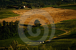 Hills And Farms Stock Photo - Image: 8456570