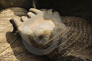 Buddha Hand Royalty Free Stock Photo - Image: 8458845