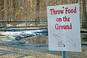 Duck And Geese Feeding Sign Stock Photo - Image: 8465090