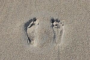 Duas Pegadas Na Areia Foto de Stock - Imagem: 8467140