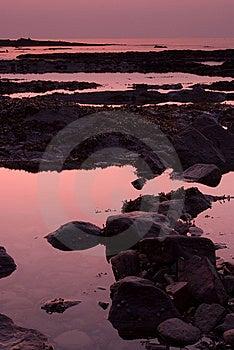 Pale Purple Sunrise Over Rockpools Royalty Free Stock Photography - Image: 8468027