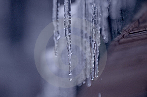 Icicle Stock Photos - Image: 8469133