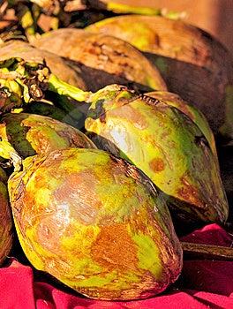 Grüne Kokosnüsse Stockfoto - Bild: 8472930
