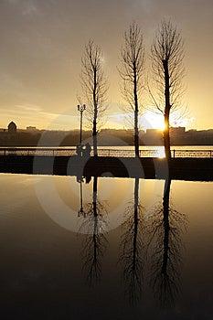 Calmness Stock Photo - Image: 8474010