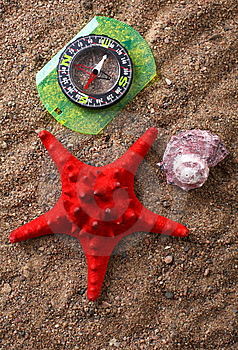 Compass And Seashells Royalty Free Stock Photography - Image: 8483147