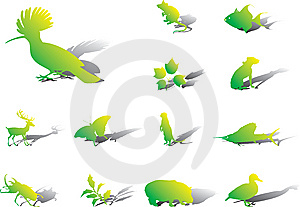 Set Icons - 98A. Nature Stock Photography - Image: 8486682