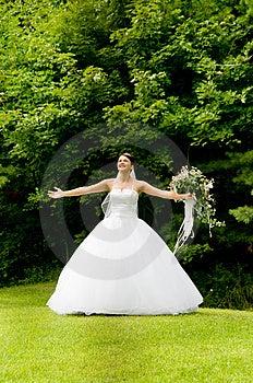 White Bride Stock Image - Image: 8493381