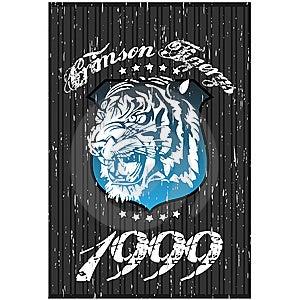 Tiger Tshirt Design Royalty Free Stock Image - Image: 8498606