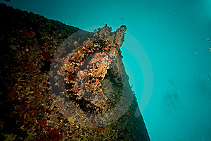 Port Side Hill Anchor Of The Thistlegorm Royalty Free Stock Photography - Image: 8500597
