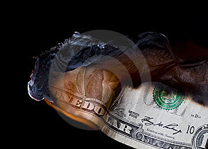 Dollar Royalty Free Stock Photography - Image: 8500997