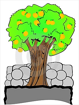 Vector Oranges Tree Royalty Free Stock Image - Image: 8502716