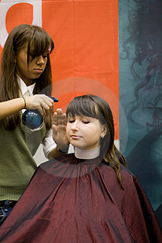 In The Salon Stock Images - Image: 8502774