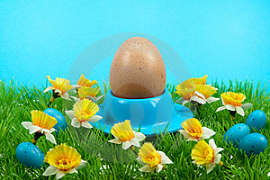 Easter Eggs In Spring Royalty Free Stock Photos - Image: 8504648