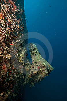 Port Side Hill Anchor Of The Thistlegorm Stock Image - Image: 8506981