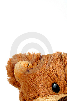 Cute Teddy Bear Stock Photography - Image: 8508192