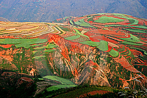 Red Soil Stock Images - Image: 8508864