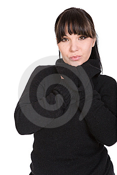 Successful Woman Royalty Free Stock Photo - Image: 8509065