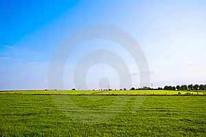 Bright Green Meadow Royalty Free Stock Photography - Image: 8509987