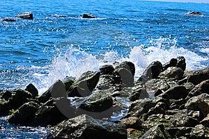 Water Splash Royalty Free Stock Images - Image: 8510869