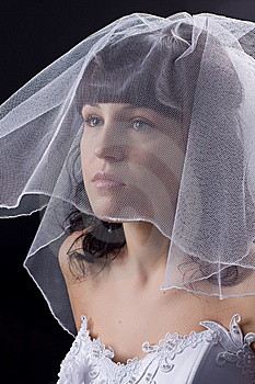 Beautiful  Bride Against Black Background Royalty Free Stock Photo - Image: 8511925
