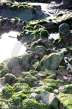 Green Rocks Royalty Free Stock Images - Image: 8512089